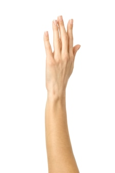 Raised woman hand voting or reaching on white