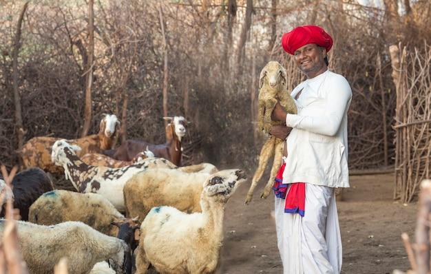 ラージャスターン部族の男性は、伝統的なカラフルなカジュアルを着て、子羊を手に持っています