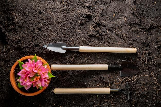 Инструменты для пересадки граблей и лопаты с видом сверху на фоне домашнего садоводства