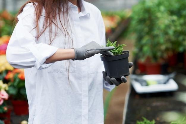 Утрамбовывание почвы. фотография девушки в перчатках, работающей с растением в горшке.