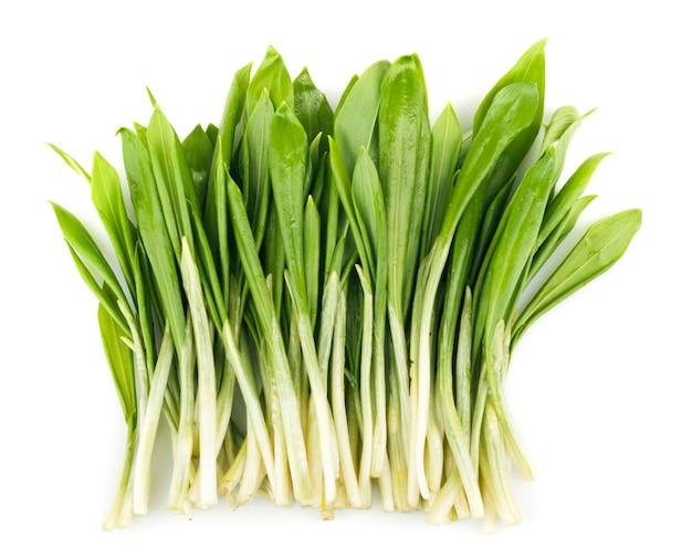 Ramson 무리 야채 흰색 절연
