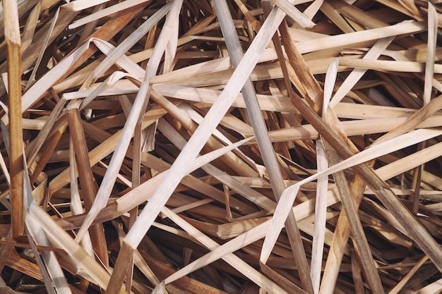 Случайно расположенные сухие увядшие листья тростника трава фон