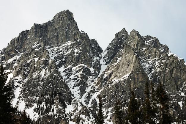 밝은 하늘 아래 눈으로 덮인 록키 산맥의 범위