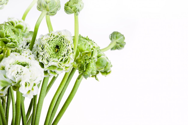 Ранункулюс букет цветов