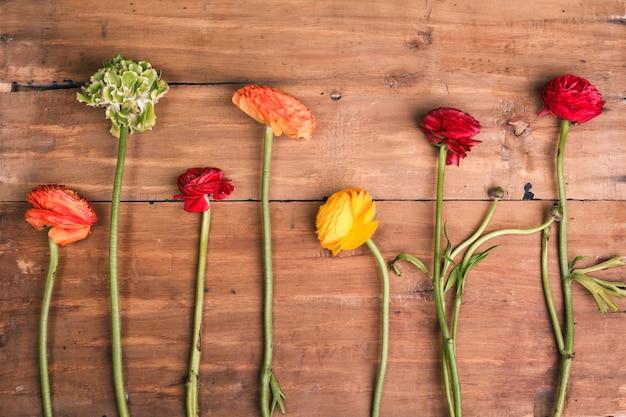 木製の背景に赤い花のranunkulyusブーケ