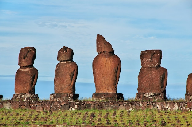 Рапа нуи. статуя моаи в аху тахаи на острове пасхи, чили