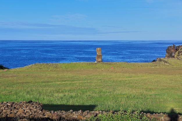 Рапа нуи. статуя моаи в ханга киое на острове пасхи, чили