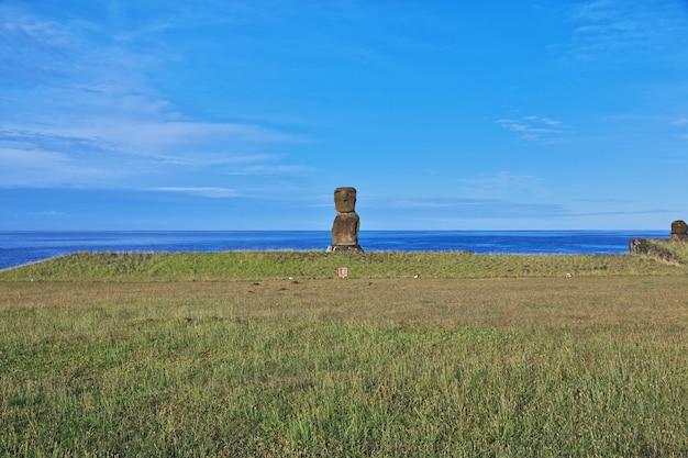Rapa nui. статуя моаи в ханга кио на острове пасхи, чили