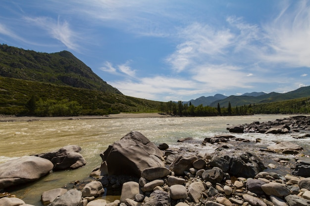 Rapid current of the chuya river in mountains altai. summer time. rocky coast. huge boulders.