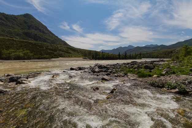 Rapid current of the chuya river in mountains altai