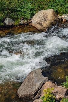 Большие валуны в горном ручье крупным планом. река rapids с copyspace. быстрый поток воды вдоль красивой растительности. быстрый поток возле мокрых камней. чистых волн. богатая флора высокогорья.