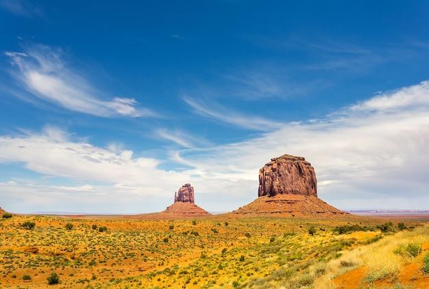Rare vegetation in desert of monument valley