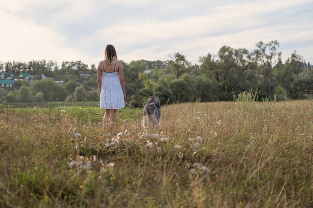 Редкий вид кавказской белокурой женщины в белом платье прогулки с собакой аляскинского маламута в летнем поле. любовь и дружба между человеком и животным.