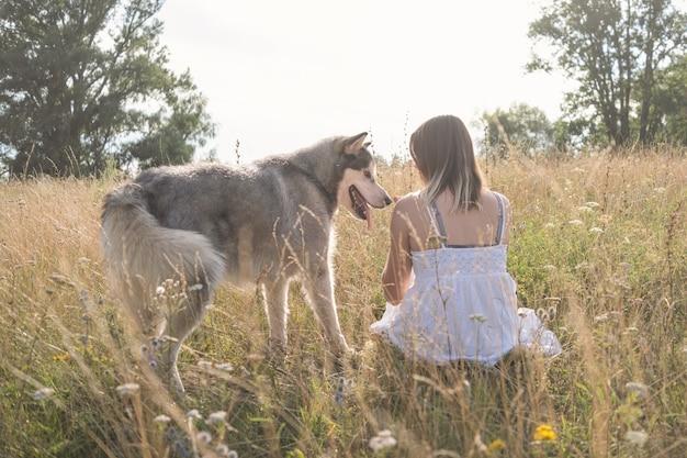 Редкий вид кавказской белокурой женщины в белом платье с собакой аляскинского маламута в летнем поле. любовь и дружба между человеком и животным.