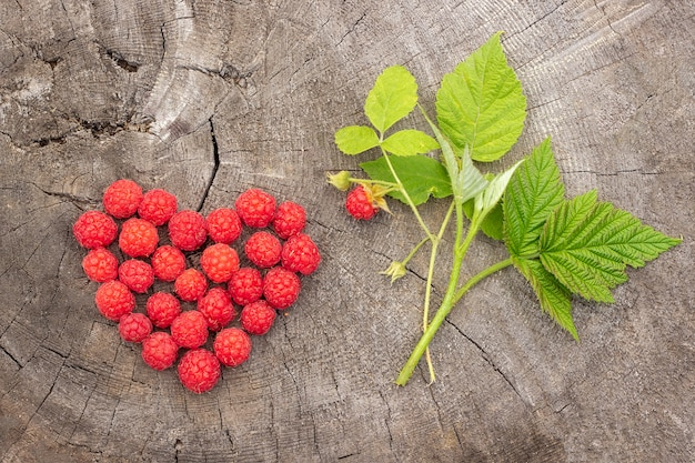 Raspberries berry heart shape and branch