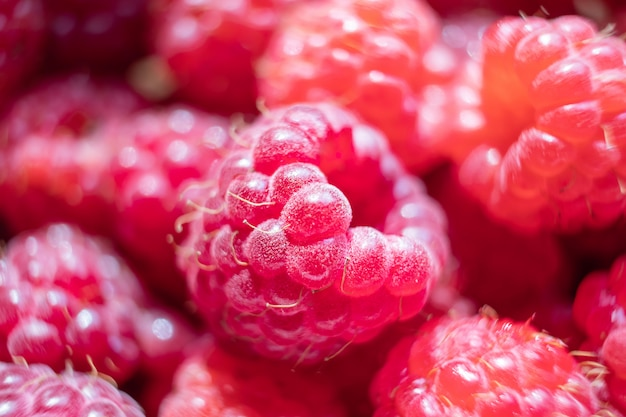 Raspberries close-up.