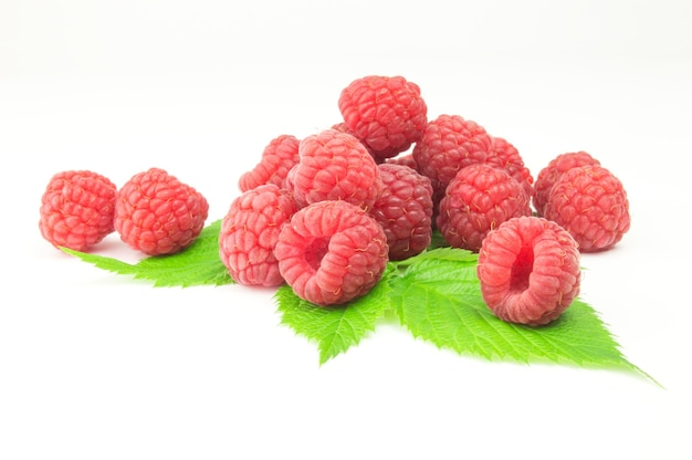 Raspberries on green leaf isolated on white surface cutout