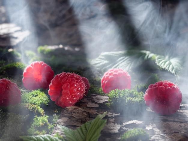 Малина ложится на мох и кору. лесной пейзаж, натуральные ягоды. полосы солнечного света.