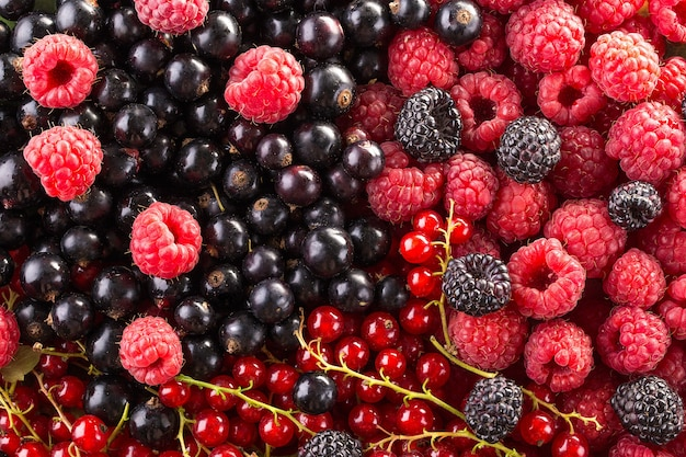 Raspberry, blackberry and currant background. fruit background.