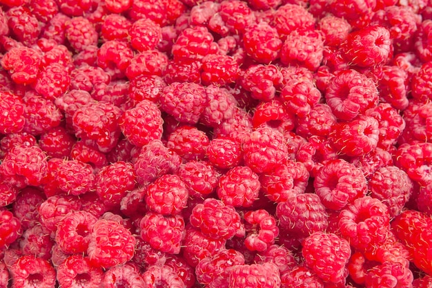 Raspberry close-up. many ripe berries close up, shallow deep of field