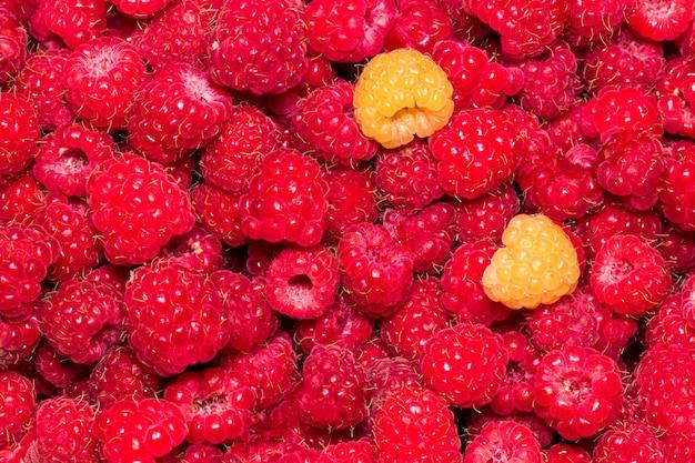 ラズベリー。新鮮な有機果実マクロ。フルーツの背景。