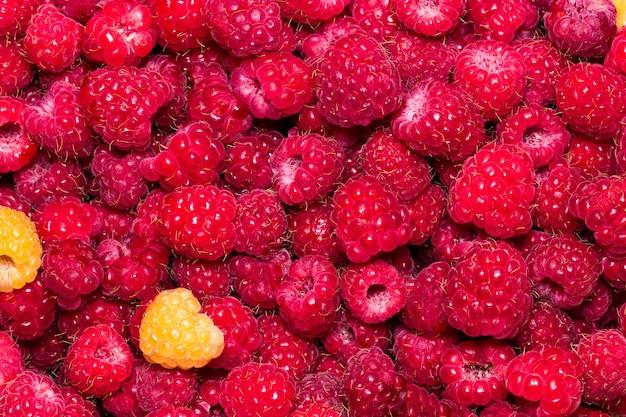 ラズベリー。新鮮な有機ベリーマクロ。果物の背景。