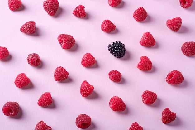 ラズベリーの甘い有機ジューシーなベリー、ピンクのブラックベリー
