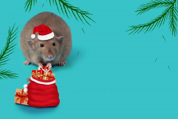 Rat - symbol of 2020 in a santa claus hat and with a bag of gifts on mint background