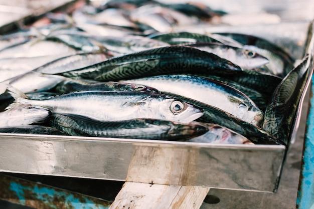 Сырые анчоусы на рыбном рынке