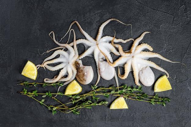 Сырцовый осьминог младенца на черной предпосылке. органические морепродукты. вид сверху