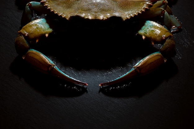 Raw blue crab over dark background, seafood