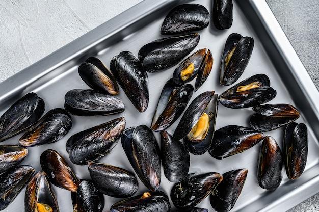 Raw blue mussels shells in kitchen steel tray