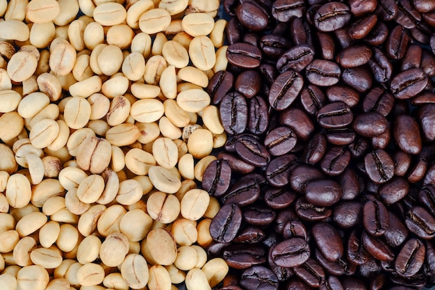 Raw coffee beans backgrond