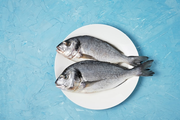 Raw dorado fish in white plate on blue background