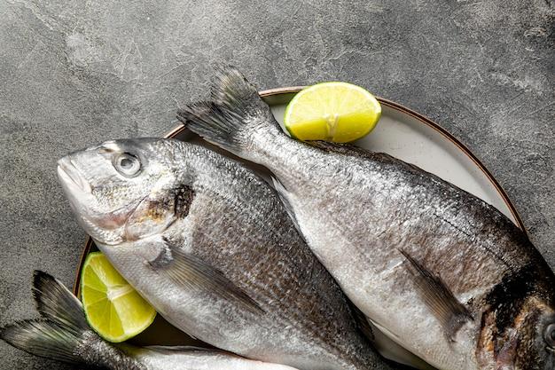 Сырая рыба дорадо с лаймом на тарелке и на темно-сером фоне, вид сверху крупным планом