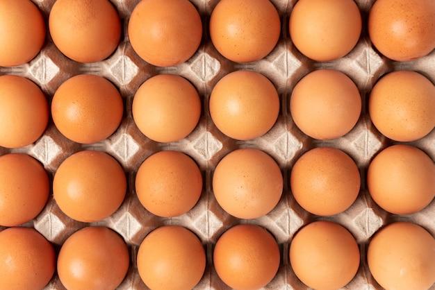 흰색 배경에 고립 된 트레이에 원시 계란.