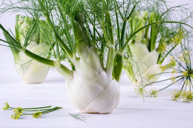 Сырые луковицы фенхеля с зелеными стеблями и листьями, цветами фенхеля и корнем, готовые готовить на белом столе