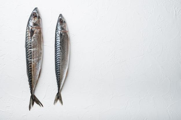 生の魚の平干し、テキスト用のスペース