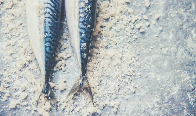 Raw fish of mackerel. selective focus. food and drink.