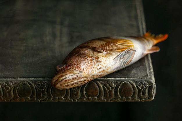 テーブルの上の生の魚ハイアングル