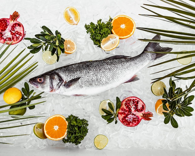 Raw fish place on ice surrounded with fruits slices