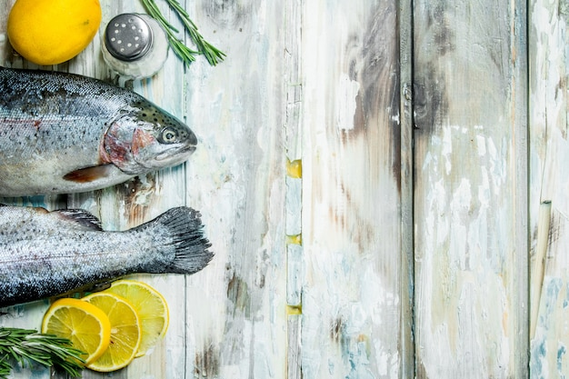 Лосось сырой рыбы с розмарином и лимоном.