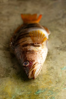 Pesce crudo sul tavolo ad alto angolo