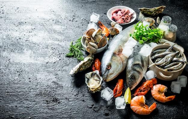 Сырая рыба с раками, креветками и устрицами. на черном деревенском
