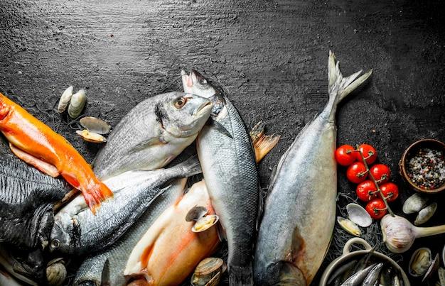 향신료, 토마토, 굴을 곁들인 생선. 검은 시골 풍 테이블에