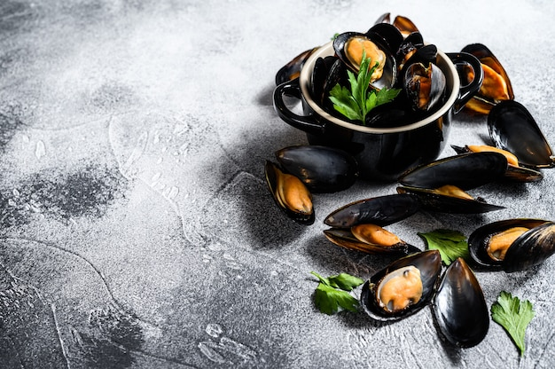 Raw fresh mussels. gray background. top view. space for text