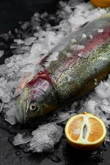 生の新鮮な有機ドラドまたは鯛とレモン、黒いスレート、石、またはコンクリートの表面上の角氷