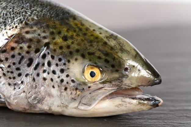 Сырой свежий органический лосось темный сланец, камень.