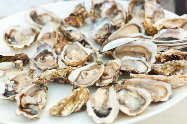 Raw fresh oysters in a white plate.