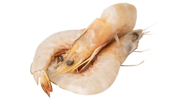 Raw fresh shrimps big prawns isolated on white background with clipping path